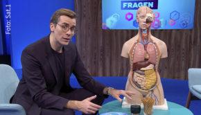 """Der bereits aus verschiedenen TV-Sendungen bekannte Arzt Dr. Johannes Wimmer ist künftig wochentags in einer eigenen Medical-Entertainment-Show in Sat.1 zu sehen. """"Die Dr. Wimmer Show"""" startet am kommenden Montag. (Foto: Sat.1)"""