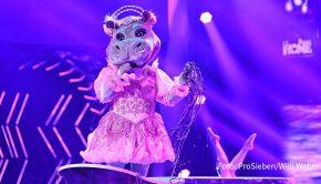 """Runde drei der Musik-Rateshow """"The Masked Singer"""" steht am morgigen 3. November bei ProSieben auf dem Programm. Mit dabei ist auch wieder das """"Nilpferd"""", unter dem viele Nutzer der Sender-App den Spitzenkoch Nelson Müller vermuten. (Foto: ProSieben/Willi Weber)"""