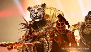 """Der """"Leopard"""", unter dem sich eine stimmgewaltige Sängerin verbirgt, tritt heute wieder bei """"The Masked Singer"""" auf. In der dritten Ausgabe der ProSieben-Show wirkt Moderator Steven Gätjen als Gast im Rateteam mit. (Foto: ProSieben/Willi Weber)"""