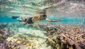 The President of the United States, Barack Obama snorkeling in the waters around Midway Atoll Midway on September 1, 2016 to commemorate his use of the Antiquities Act to expand the boundaries of  the Papahānaumokuākea Marine National Monument.